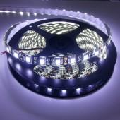 Black PCB 5050 White Light Waterproof LED Strip 5M 300 LEDs 12V
